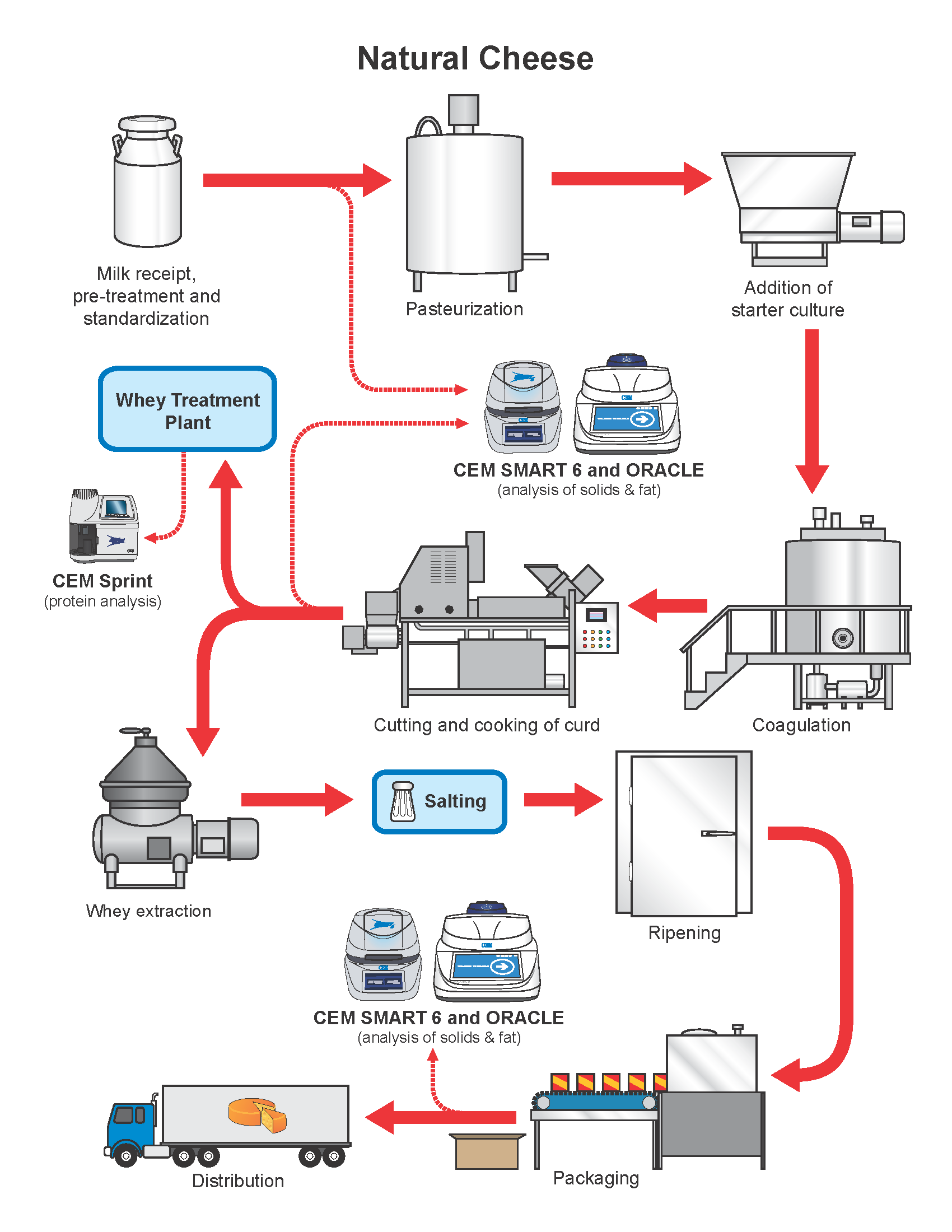 Natural Cheese Production Process
