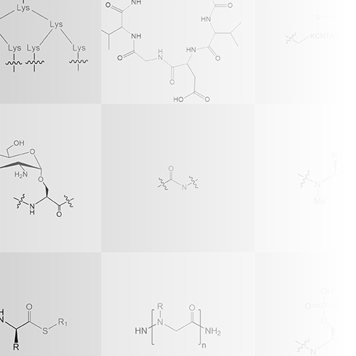 Synthesize Phosphopeptides, Glycopeptides, Branched Peptides, PNA, Peptoids and More