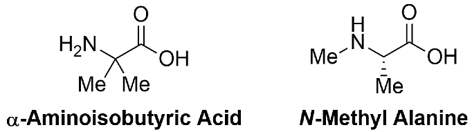 Sterically-hindered, non-standard amino acids