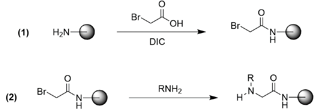 Typical synthesis of peptoids