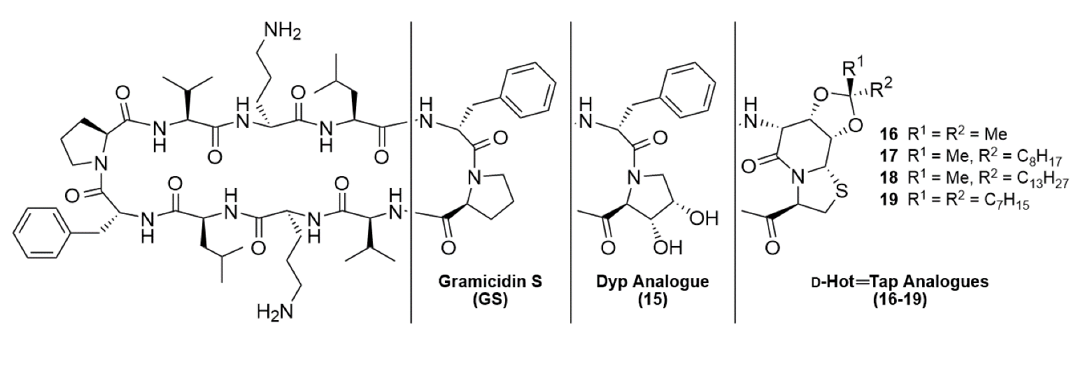 Gramicidin S and Geyer's Synthetic Analogues
