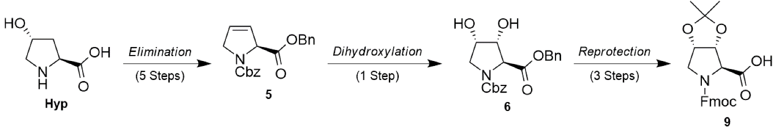 Synthesis of cis-Dihydroxyproline (Dyp) Building Block