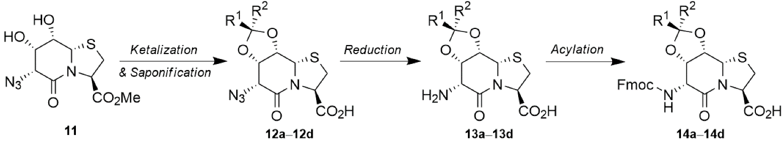 Synthesis of D-Hydroxythreonine═Thiaproline (D-Hot═Tap) Building Blocks