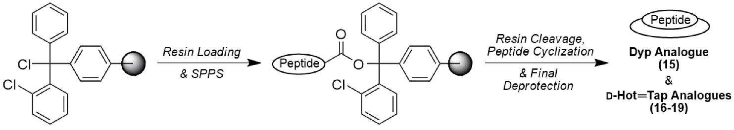 Synthesis of Dyp and D-Hot═Tap Analogues
