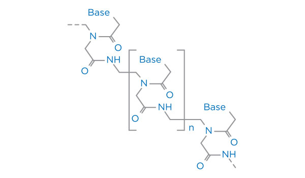 Peptide Nucleic Acid (PNA) Synthesis
